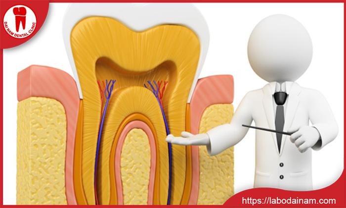 Răng còn tủy lúc nào cũng sống bền hơn răng đã lấy tủy